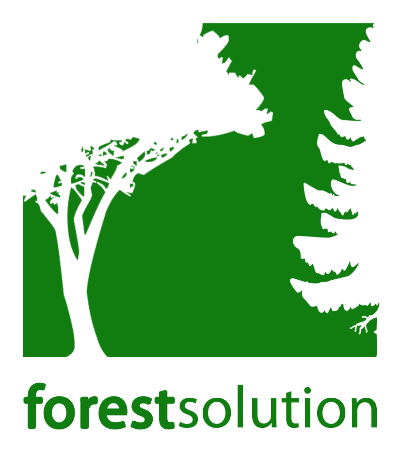 forest solution